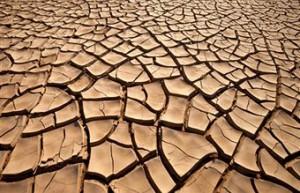 estudios contaminación suelos