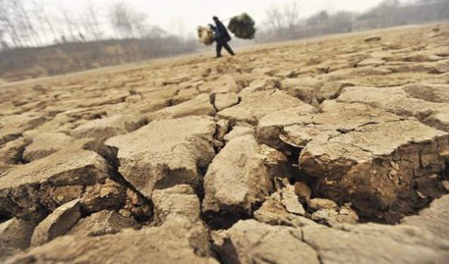 """Geòleg avisa que la degradació de sòls """"s'ha accelerat en última dècada"""""""